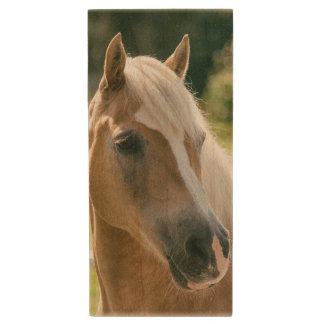 Clé USB Beau portrait de cheval de haflinger