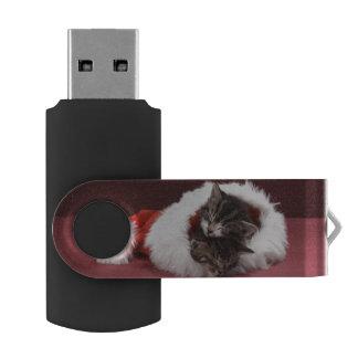 Clé USB Chatons endormis ensemble dans le chapeau de Noël