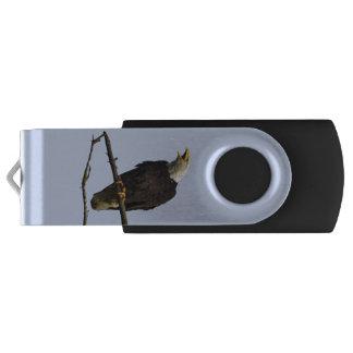 Clé USB commande d'instantané de 32GB USB avec l'aigle et