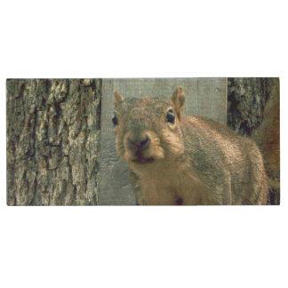 Clé USB Commande d'instantané d'écureuil