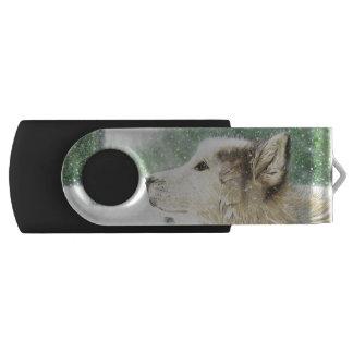 Clé USB Commande hypnotisée d'instantané de pivot de loup