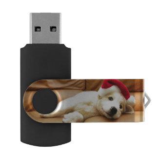 Clé USB Le chiot porte un chapeau de Noël et le mensonge