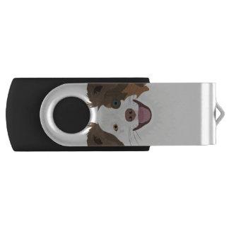 Clé USB Visage heureux border collie de chiens