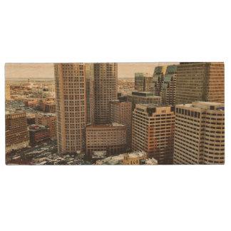 Clé USB Vue de Boston