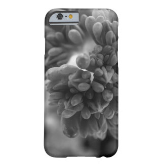 CloseCactus Coque Barely There iPhone 6