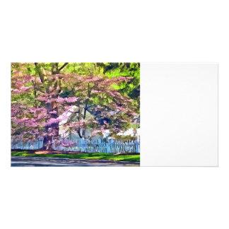 Clôture blanche par les arbres fleurissants photocartes