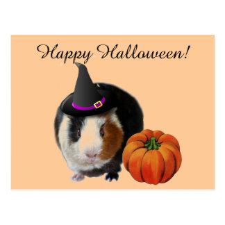 Cobaye de Halloween Carte Postale