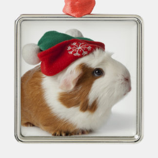 Cobaye mignon avec le chapeau de Noël sur le blanc Ornement Carré Argenté