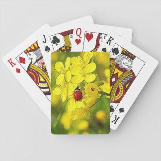 Coccinelle jaune de rouge de bonne chance de fleur cartes à jouer