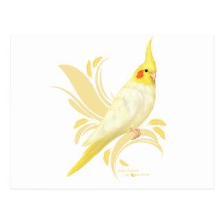 Cockatiel de Lutino Cartes Postales