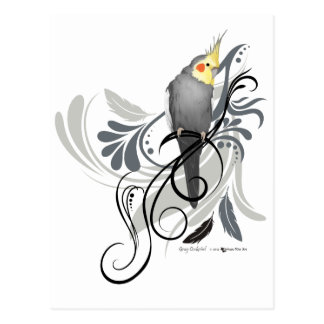 Cockatiel gris cartes postales