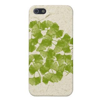Coeur de feuille de Ginkgo Coques iPhone 5