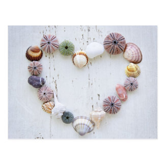 Coeur des coquillages et des roches carte postale