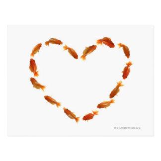 Coeur fait avec des poissons rouges carte postale