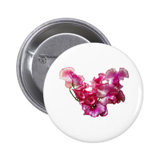 Coeur rose de pois doux badge