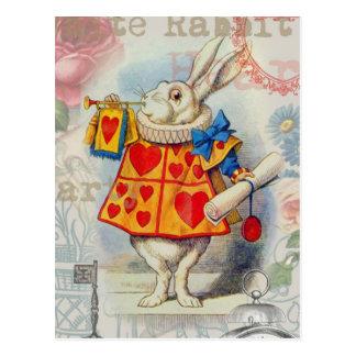 Coeurs blancs de lapin carte postale