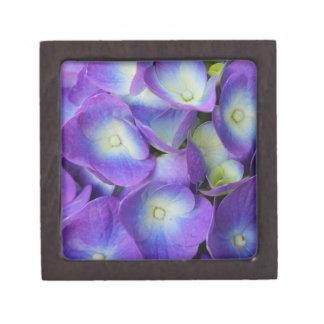 Coffrets Cadeaux De Première Qualité Beauté d'un hortensia bleu