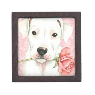 Coffrets Cadeaux De Première Qualité Valentine Dogo rose