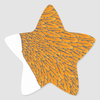 coiffe indienne 1 sticker étoile