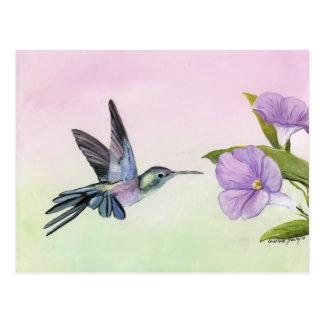 Colibri à la carte postale d'art d'oiseau de