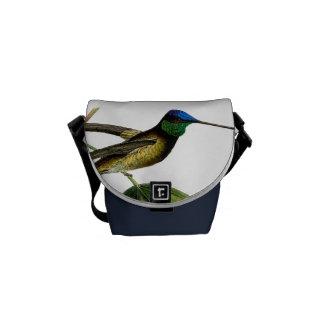 Colibri botanique bleu vert noir, vintage besaces