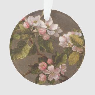 Colibri et fleurs d'Apple