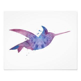 Colibri Impression Photo