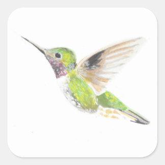 Colibri Sticker Carré