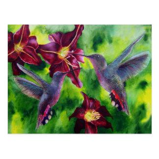 Colibris et carte postale de Lillies