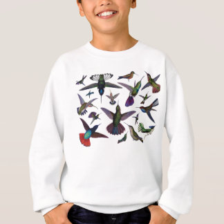 Colibris vintages sweatshirt