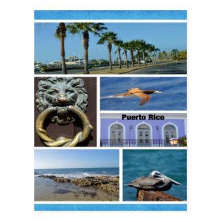 Collage de nature de San Juan, Porto Rico Carte Postale