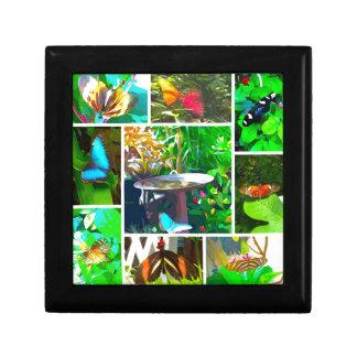 Collage de papillon boîte à souvenirs