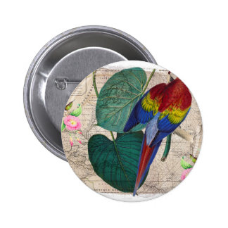 Collage tropical badges