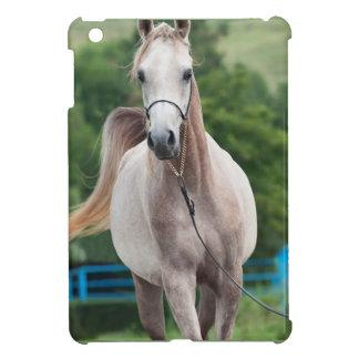 collection de cheval. Arabe Étuis iPad Mini