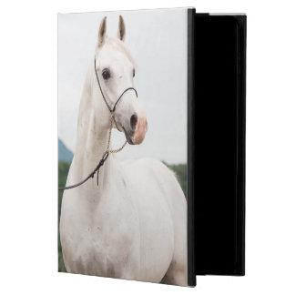 collection de cheval. blanc Arabe