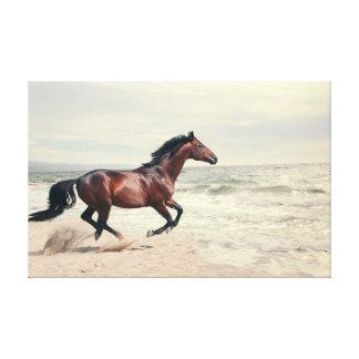 collection de cheval. mer toiles