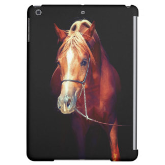 collection de cheval. rouge Arabe