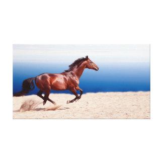 collection de cheval. Trakehner Toiles