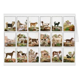 Collection de chien dans le style vintage cartes de vœux