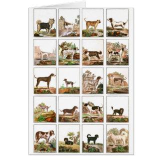 Collection de chien dans le style vintage carte