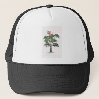 collection tropicale de palmier - V de dessin Casquette