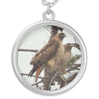 Collier 1 de faucon