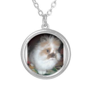 Collier adorable de lapin de lionhead