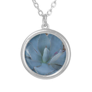 Collier Agave