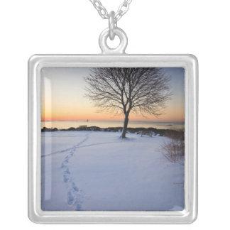 Collier Arbre solitaire dans la neige fraîche au nouveau