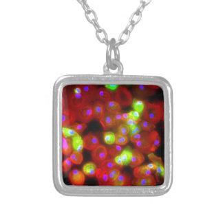 Collier Art de la Science de cellules de macrophage