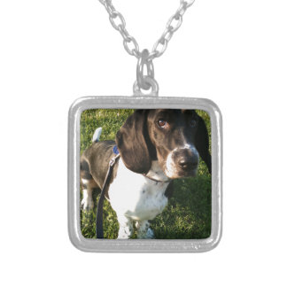 Collier Basset Hound adorable Snoopy
