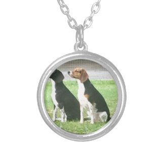 Collier Beagles