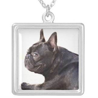 Collier Bouledogue français