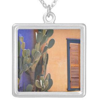 Collier Cactus du sud-ouest (dejecta d'opuntia) et